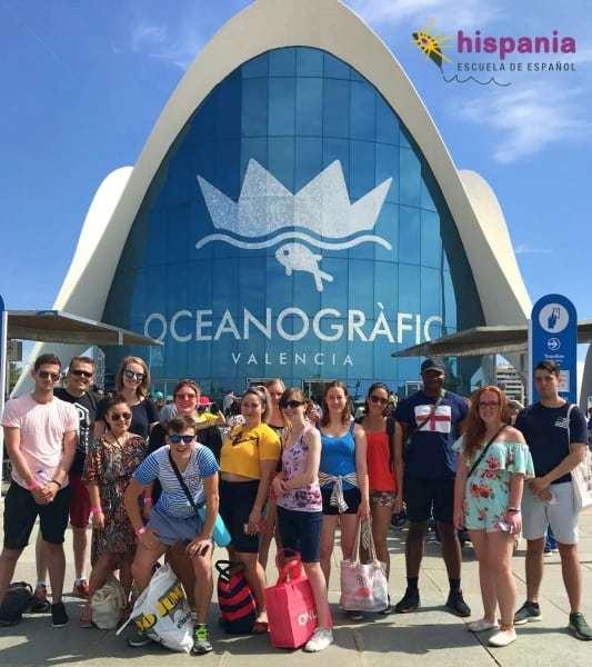 Actividad en Oceanogáfic