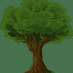 a quién buen árbol se arrima buena sombra le cobija
