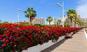 puente flores hispania