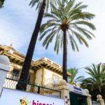 Hispania escuela de español palmeras